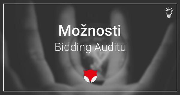 Bidding Audit