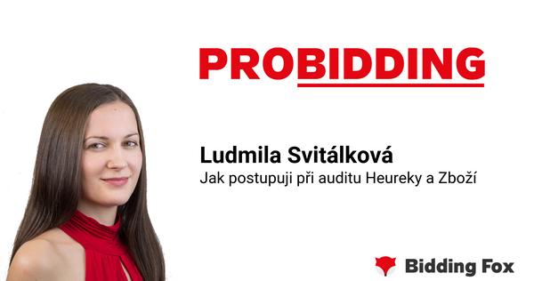 PROBIDDING 2019 - záznam přednášky Lídy Svitálkové