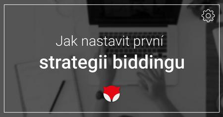 První strategie biddingu
