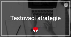 Testovací strategie