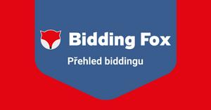 Jak filtrovat produkty - 2. díl Přehled biddingu